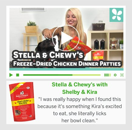 Stella & Chewy's com Shelby e Kira
